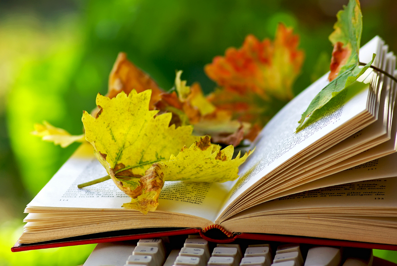 Image result for books in fall