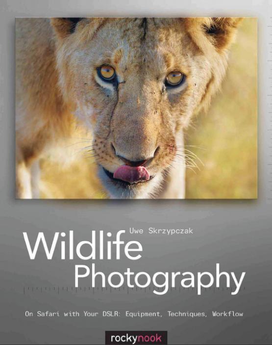 Wildlife20Photography