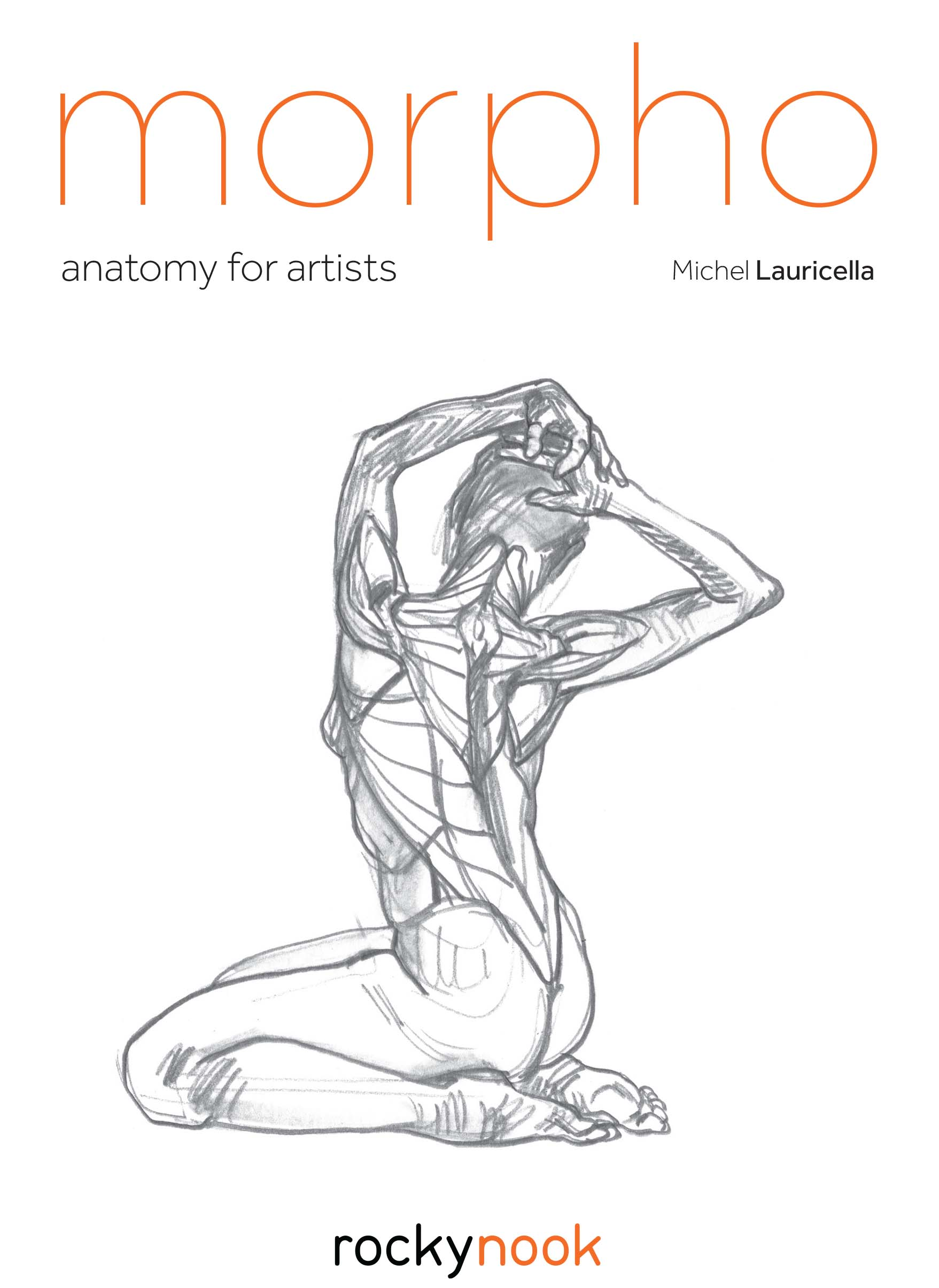 Morpho - Anatomy for Artists